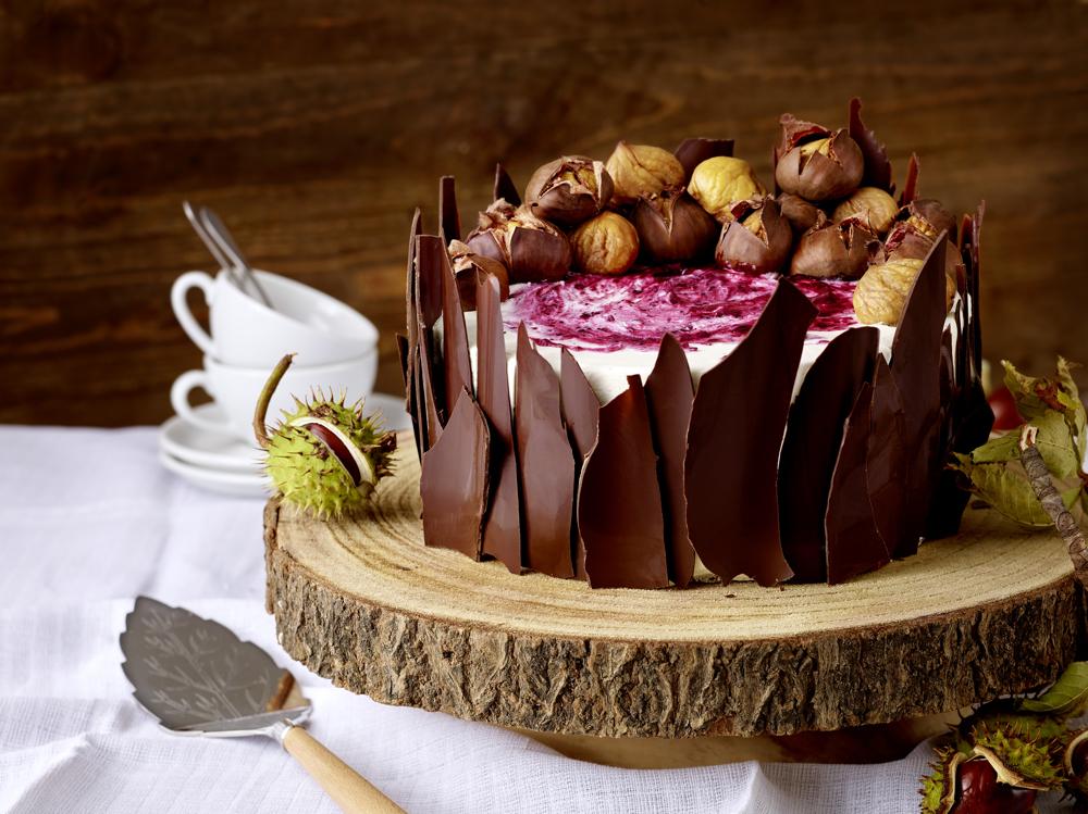 Torte mit temperierter Schokolade